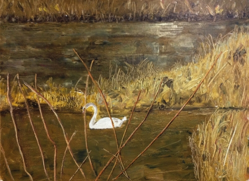 swan pond by robert