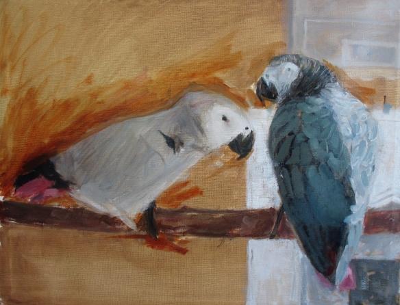 Sandy's parrots