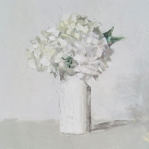 white hydrangea c