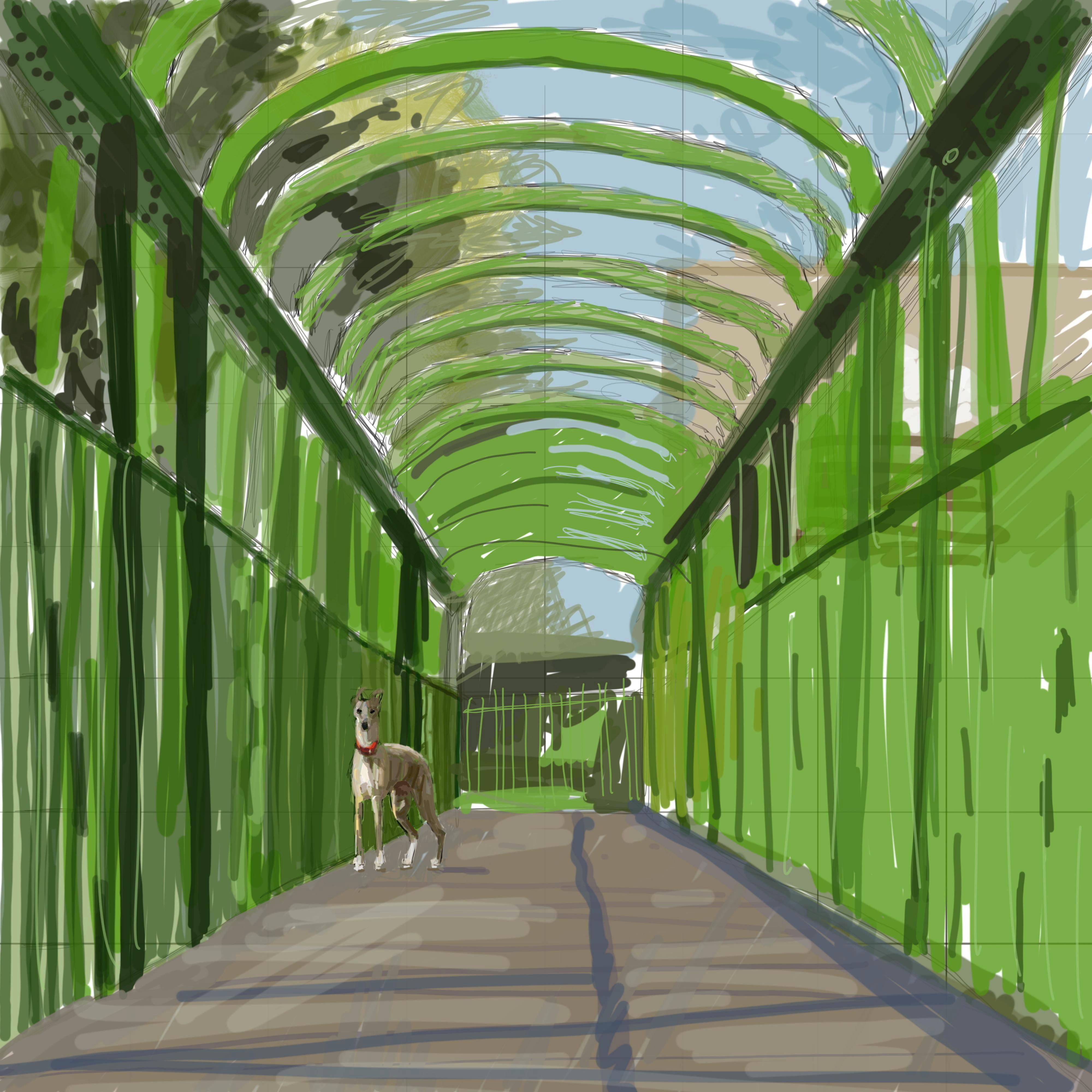 Effie on the green bridge3