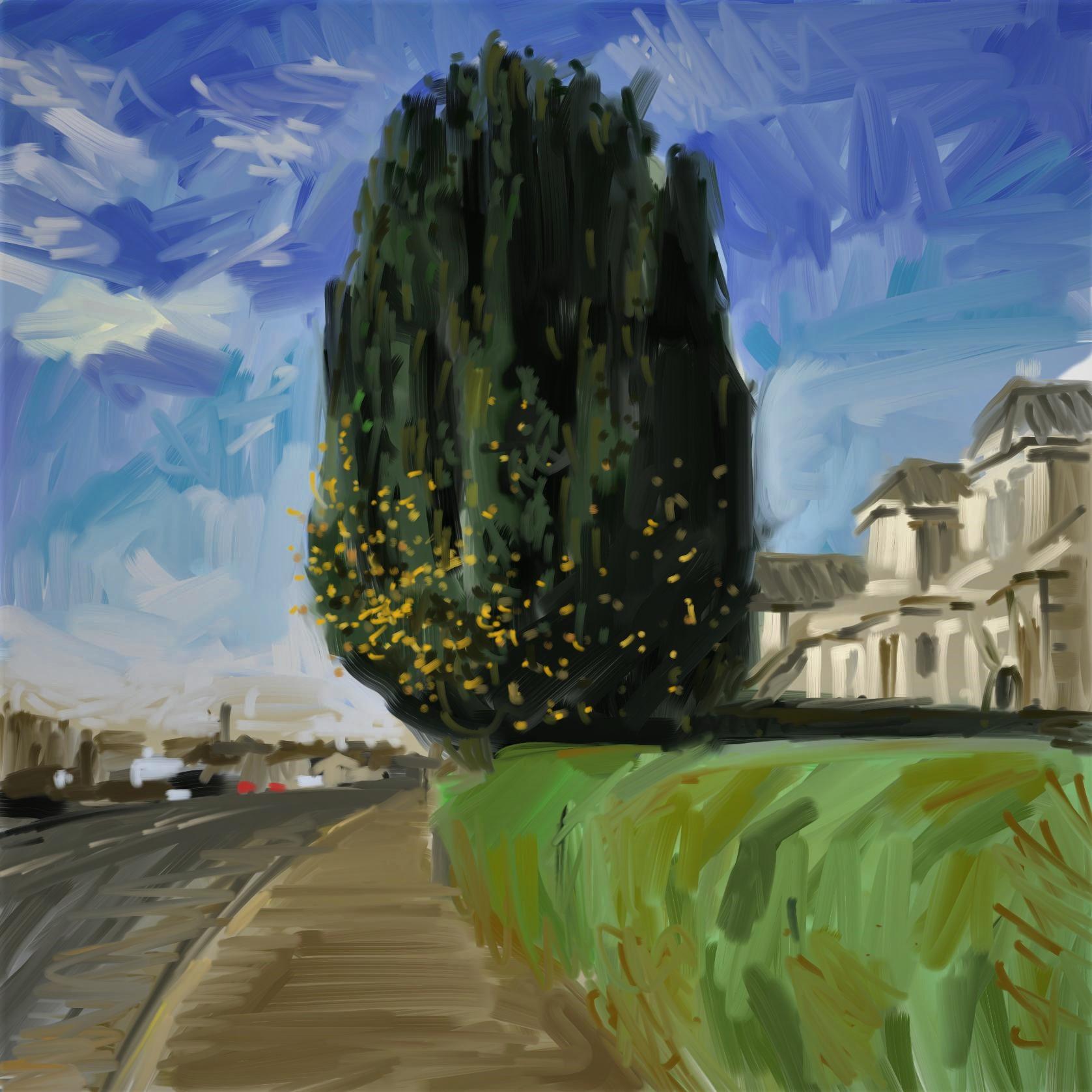 tree bank street7